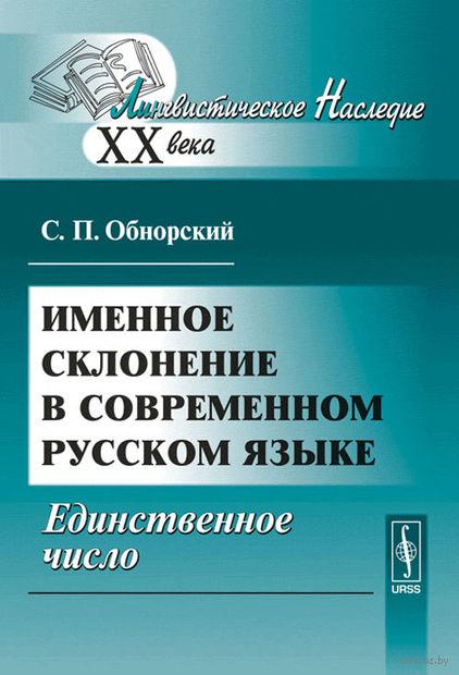 Именное склонение в современном русском языке. Единственное число — фото, картинка