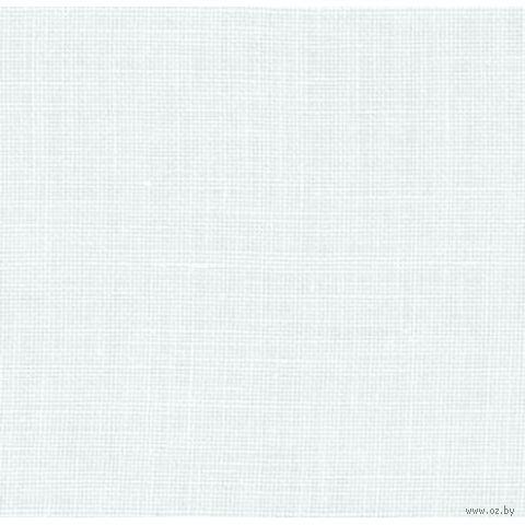 Канва без рисунка Edinburgh 35 (50х70 см; арт. 3217/100) — фото, картинка