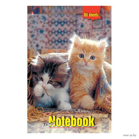 """Блокнот в клетку """"Котята под пледом"""" (А5) — фото, картинка"""