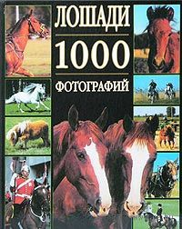Лошади. 1000 фотографий. Бертран Леклер