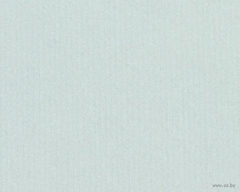Паспарту (21x30 см; арт. ПУ2495) — фото, картинка