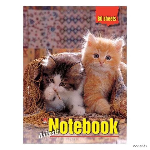 """Блокнот в клетку """"Котята под пледом"""" (А6) — фото, картинка"""