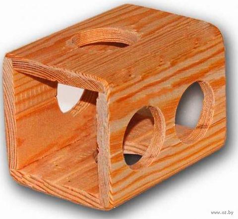 Домик-туннель для грызунов (10х7х7 см) — фото, картинка