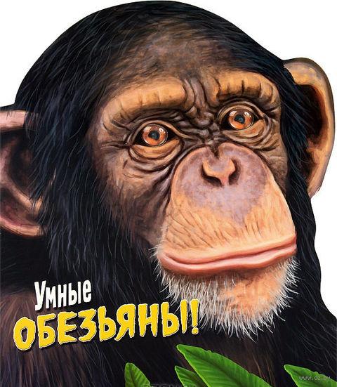 Умные обезьяны!