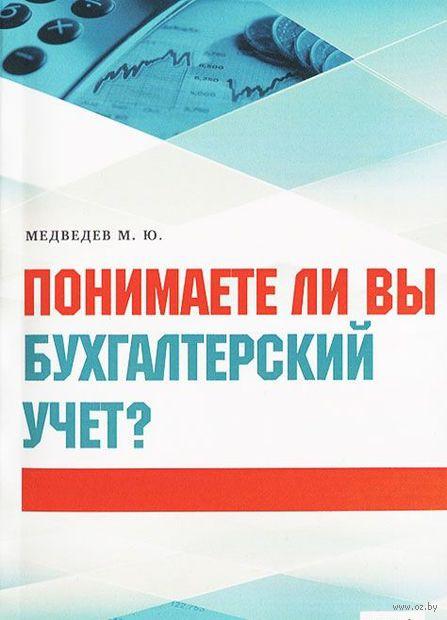 Понимаете ли вы бухгалтерский учет?. Михаил Медведев