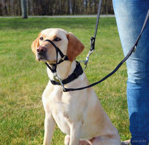 """Шлея тренировочная для собак """"Top Trainer Training Harness"""" (размер L-XL; 48-60 см; черный)"""