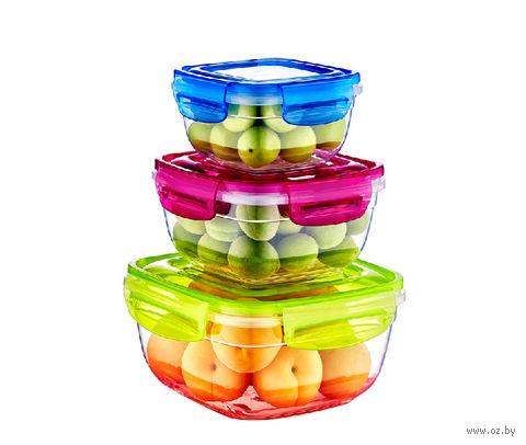 Набор контейнеров для продуктов (3 шт.; арт. 30242) — фото, картинка