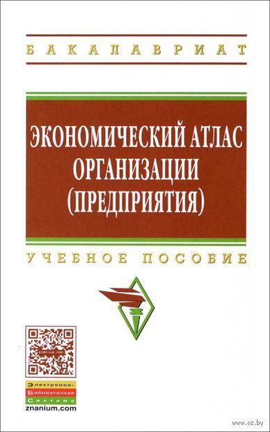 Экономический атлас организации (предприятия). Р. Казакова, Владимир Поздняков, Г. Болкина