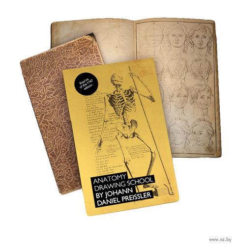 "Блокнот нелинованный ""Anatomy Drawing schol by Johann Daniel Preissler"""