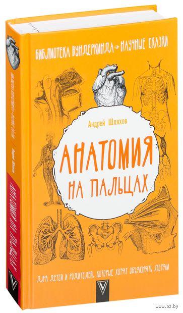 Анатомия на пальцах. Для детей и родителей, которые хотят объяснять детям — фото, картинка