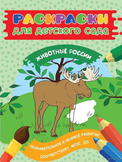Раскраски для детского сада. Животные России — фото, картинка