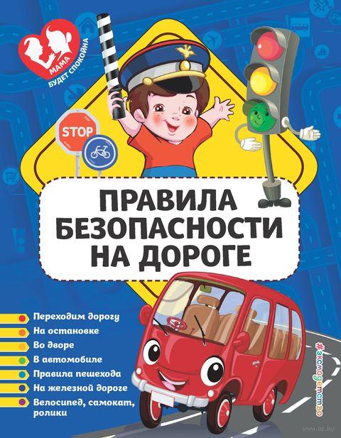 Правила безопасности на дороге — фото, картинка