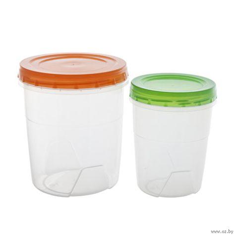 Набор банок для сыпучих продуктов (2 шт.; арт. 43302-43302) — фото, картинка