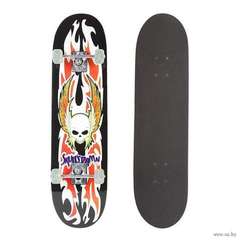 Скейтборд (арт. Т20916) — фото, картинка