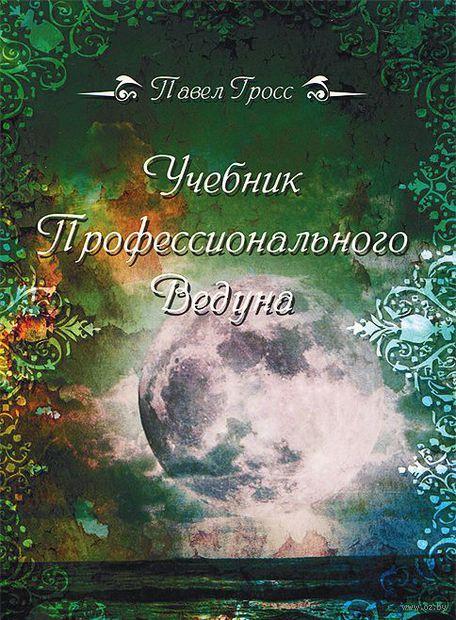 Учебник профессионального Ведуна. Павел Гросс