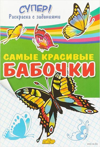 Самые красивые бабочки — фото, картинка