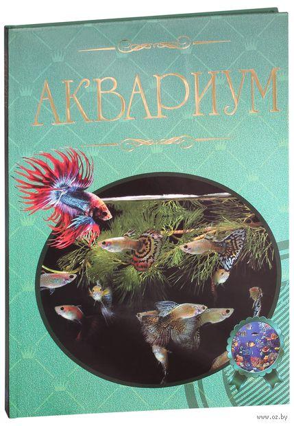 Аквариум. Иллюстрированная энциклопедия. Дарья Ермакович