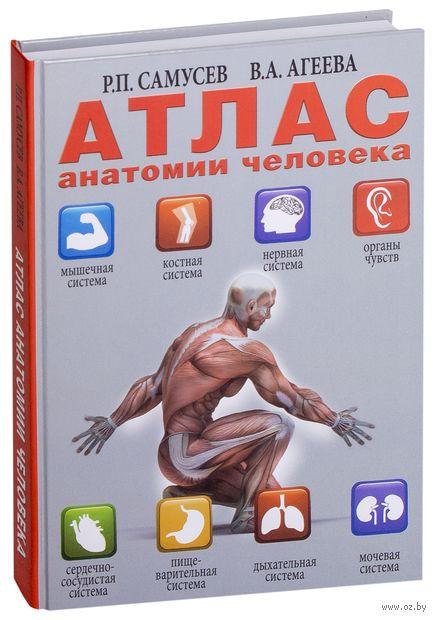 Атлас анатомии человека. Рудольф Самусев, В. Агеева