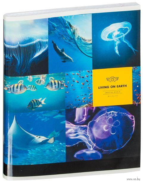 """Тетрадь в клетку 96 листов """"Животные. Living on Earth"""""""