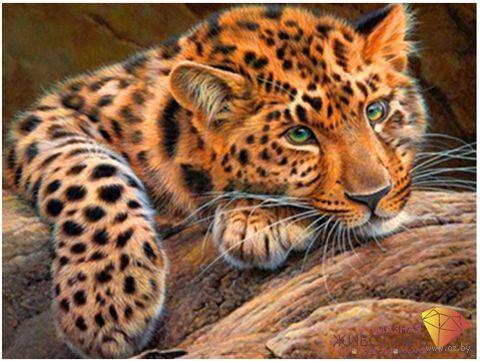 "Алмазная вышивка-мозаика ""Леопард"" (300x400 мм) — фото, картинка"