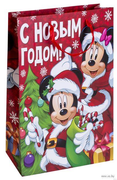 """Пакет бумажный подарочный """"Яркого праздника"""" (31х40х10 см) — фото, картинка"""