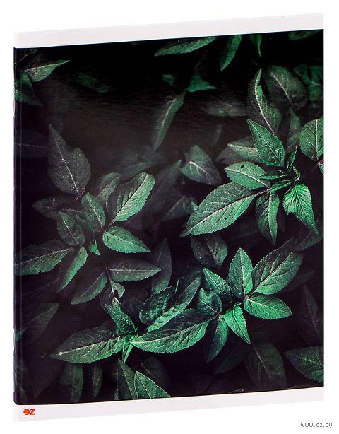 """Тетрадь полуобщая в клетку """"Паттерн. Листья"""" (48 листов) — фото, картинка"""
