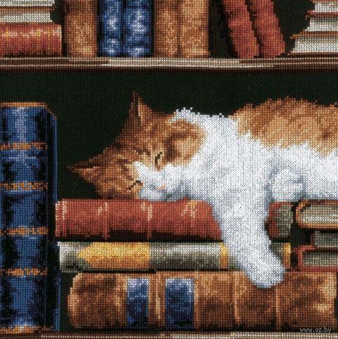 """Вышивка крестом """"Кошка, спящая на книжной полке"""" (240x330 мм) — фото, картинка"""