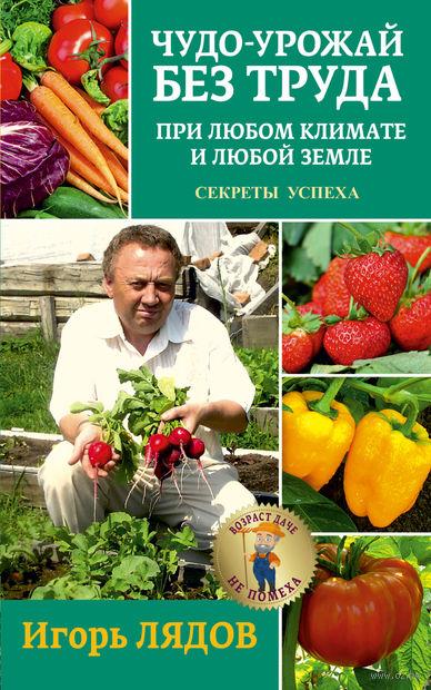 Чудо-урожай без труда. При любом климате и любой земле. Секреты успеха — фото, картинка