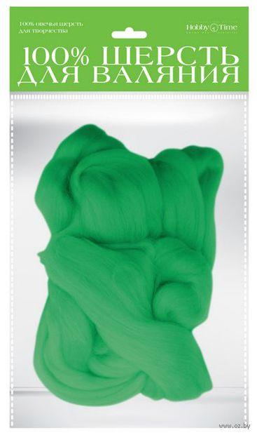 Шерсть для валяния (мятная; 50 г) — фото, картинка