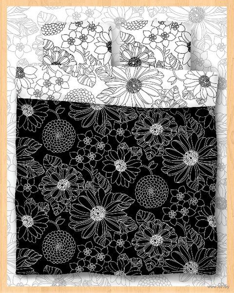 "Постельное белье ""Black and White"" (евро) — фото, картинка"