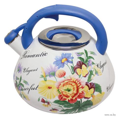 Чайник стальной эмалированный (3,5 л) — фото, картинка