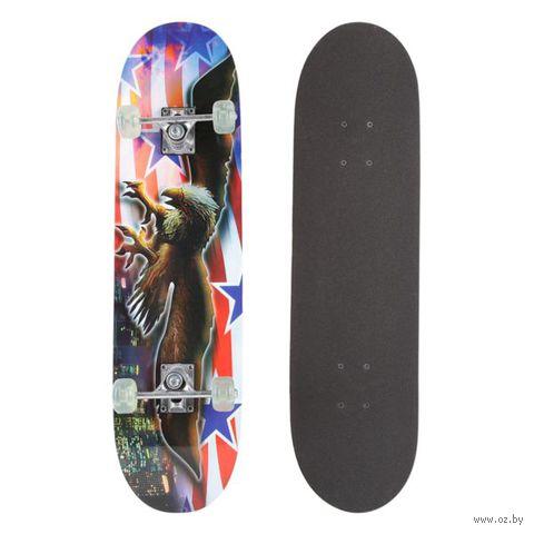 Скейтборд (арт. HB094)