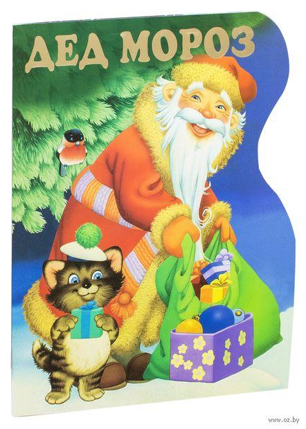 Дед Мороз — фото, картинка