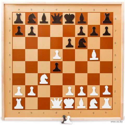 Демонстрационные шахматы магнитные — фото, картинка