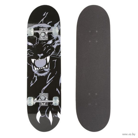 Скейтборд (арт. Т44974) — фото, картинка