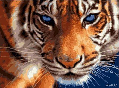 "Картина по номерам ""Взгляд синих глаз"" (300х400 мм) — фото, картинка"
