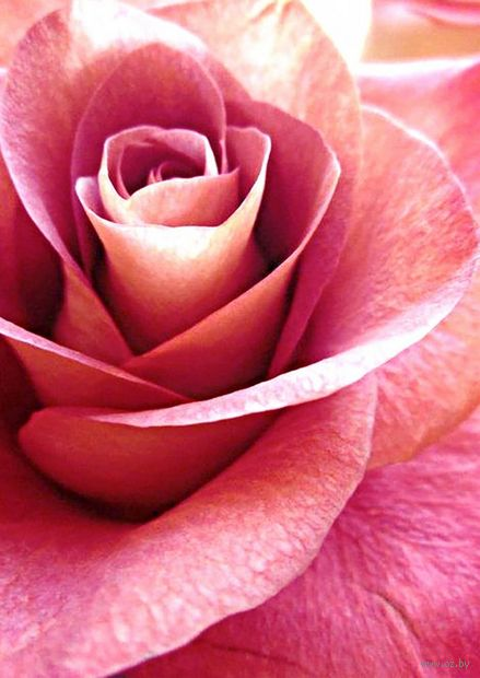 "Алмазная вышивка-мозаика ""Глубина цвета"" (270х380 мм) — фото, картинка"