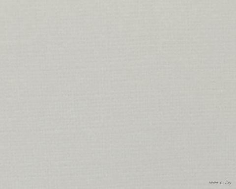 Паспарту (21x30 см; арт. ПУ2822) — фото, картинка