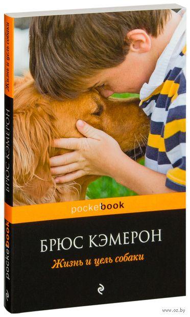Жизнь и цель собаки (м) — фото, картинка