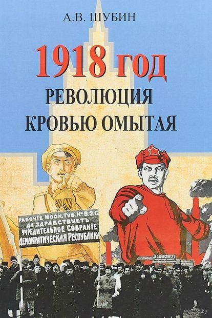 1918 год. Революция кровью омытая — фото, картинка