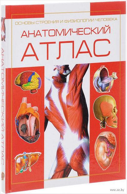 Анатомический атлас. Основы строения и физиологии человека — фото, картинка