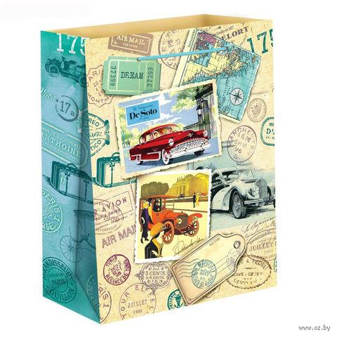 """Пакет бумажный подарочный """"Путешествие"""" (18х23х8 см; арт. 10733106)"""