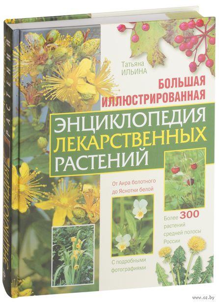 Большая иллюстрированная энциклопедия лекарственных растений. Татьяна Ильина