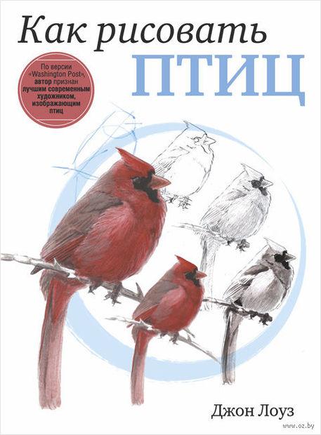 Как рисовать птиц — фото, картинка