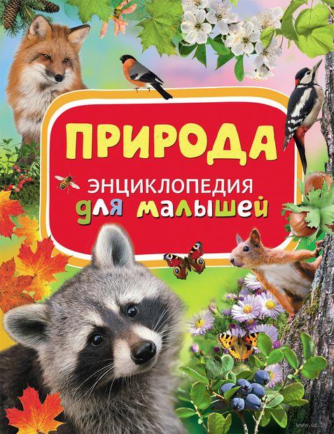 Природа. Энциклопедия для малышей — фото, картинка