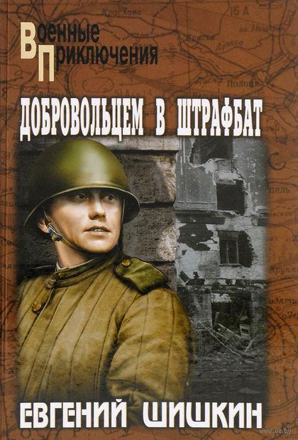 Добровольцем в штрафбат. Евгений Шишкин