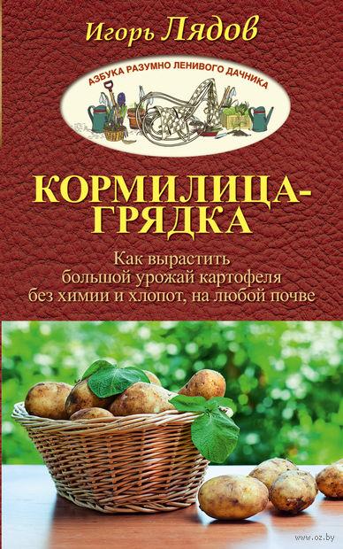 Кормилица-Грядка. Как вырастить большой урожай — фото, картинка
