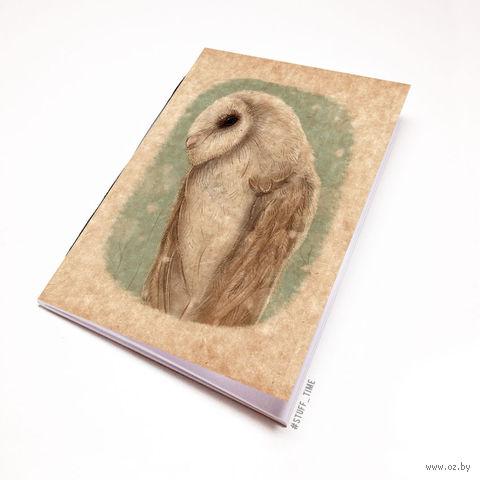 """Блокнот крафт """"Сова"""" (А5; арт. 659) — фото, картинка"""