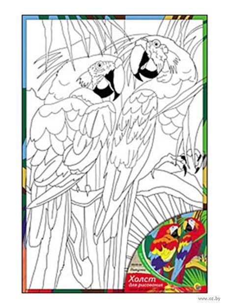 """Набор для рисования """"Попугаи"""""""