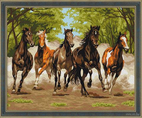 """Картина по номерам """"Табун лошадей"""" (400х500 мм) — фото, картинка"""